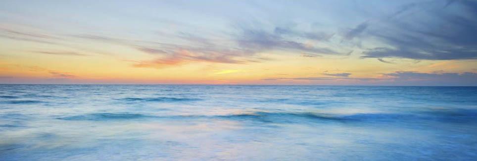 Holistic Family Medicine | Lisa Beth Freedman, MD, ABFM